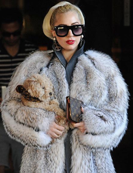 صور Lady Gaga Angered PETA cacafur.jpg